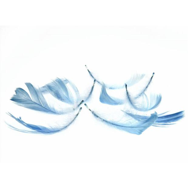 Deko-Federn, 270 Stück, 15g, 153 hellblau