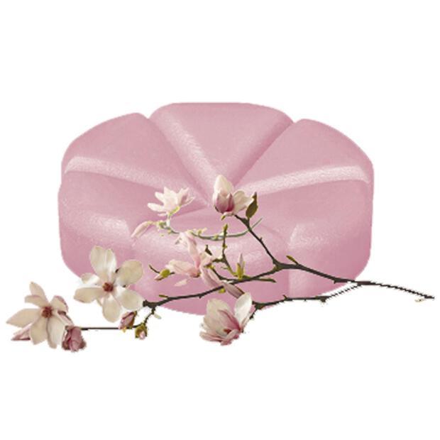 Bolsius Creations Schmelz-Duftblüten 04 Magnolie